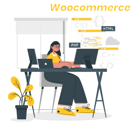 WooCommerce Development solutions