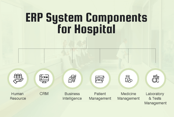 Components of Hospital ERP